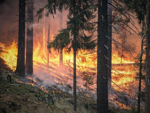 Brannen på Saltrød er nå slokket.