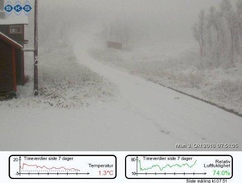 Skihytta i Sulis mandag morgen, fra SKS sitt webkamera.