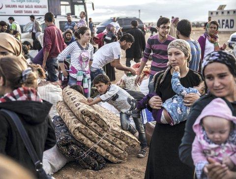 To univers: Hanna (32) står overfor valgets kvaler. Skal hun kjøpe røkt eller urøkt pinnekjøtt til jul. Samtidig tvitrer syriske Bana (7) at hun tror livet snart tar slutt i den krigsherjede syriske byen Aleppo. Det er noen av betraktningene Hanna Gjermundrød gjør i sin spalte denne lørdagen.FOTO: SCANPIX