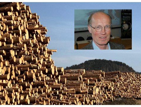 FUSJON: Terje Uggen leder Mjøsen Skogs arbeid for en fusjon. Har han en Plan B?