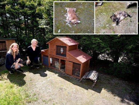 Kaninene Harriet og Chewy ble drept. Eierne Maria t.v og Isabel Rosenkrantz-Olsen fortviler.