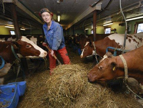 FRISKEST I LANDET: Melkebonde Lise Kaldahl Skreddernes i Lebesby kan sies å ha blant de friskeste melkekyrne i landet.