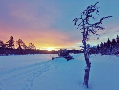 NYPREPARERTE: Skiløypene i Bymarka ble preparert fredag morgen. Her fra Bjørnestien, mellom Ringvål og Bjørktjønna.