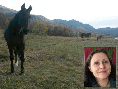 MISTET HESTENE: Line Skog Johansen er i sjokk etter at hun mistet alle hestene sine etter at de ble påkjørt på E6 i Kåfjord tirsdag.