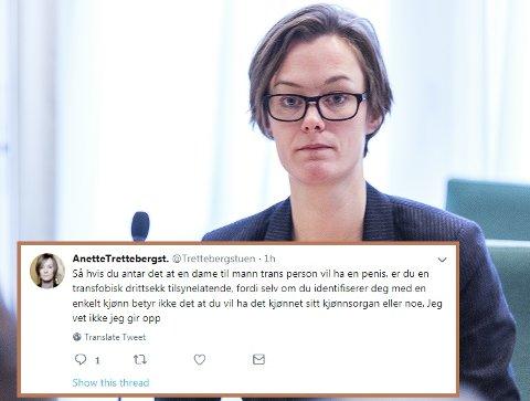 HACKET: Denne og flere andre meldinger ble publisert på Anette Trettebergstuens twitter-konto torsdag kveld. – Dette er temaer jeg mener mye om, men jeg tvitrer nesten aldri. Det er noen som bruker min konto, uten at jeg vet det, sier hun til Østlendingen. Foto: Gorm Kallestad, NTB scanpix / Skjermdump: Twitter