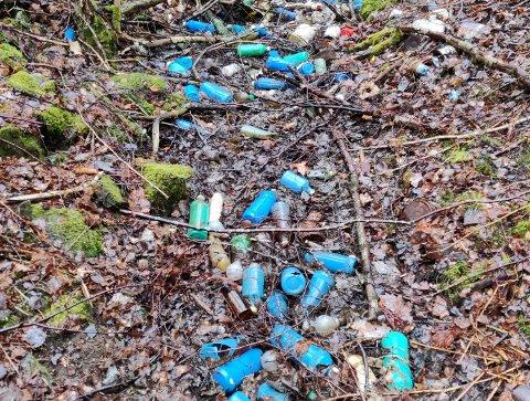 SØPPEL: Dette søppelet har ikke blitt ryddet opp, selv om det har gått nesten to år.