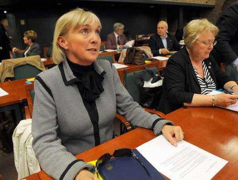 VESTFOLD-MODELLEN: - Vestfold Høyre går for en flat og moderat modell for politikergodtgjørelser, ala den modellen Vestfold har i dag, sier Vestfold Høyres gruppeleder i fylkestinget, Liv Margit Karto.