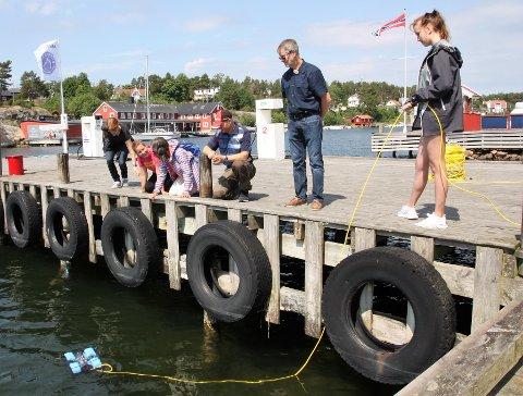 FORSKNING: Elever og lærere fra Cicignon barne- og ungdomsskole har utforsket havbunnen i Engelsviken de siste dagene. De er en del av interreg-prosjektet Scandinavian Science Cluster.