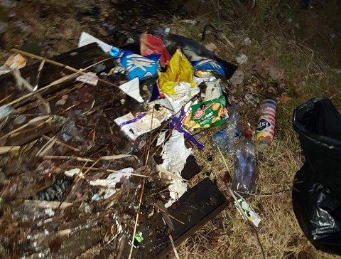 SØPPEL: Dette er bare noe av søppelet som befant seg i vannkanten ved Tredje dam i Fredrikstadmarka.