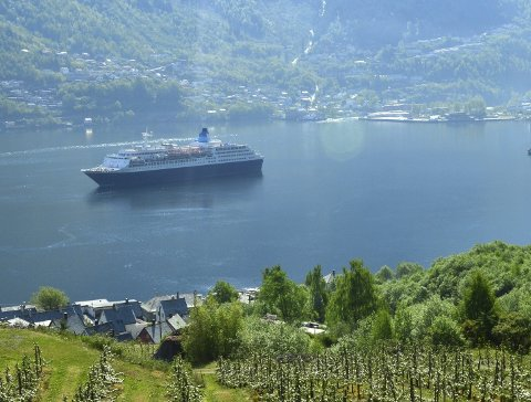 Sjeldent syn: De fire annonserte cruiseanløpene til Odda kommer først neste sommer.
