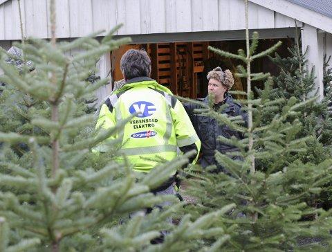 De siste årene har det i snitt blitt solgt rundt 1,4 millioner juletrær her til lands.