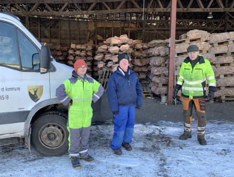 SKUFFET: Peder Frednes, Anders Helge Johansen og arbeidsleder Per Løvlie er skuffet over at noen har forsynt seg fra lageret deres.