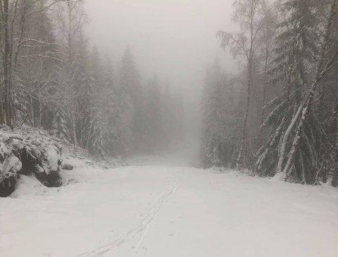 Det ble full vinter i Vestskauen tidligere i uka. Søndag kveld er det mye nedbør og i høyereliggende strøk skal den komme som snø.