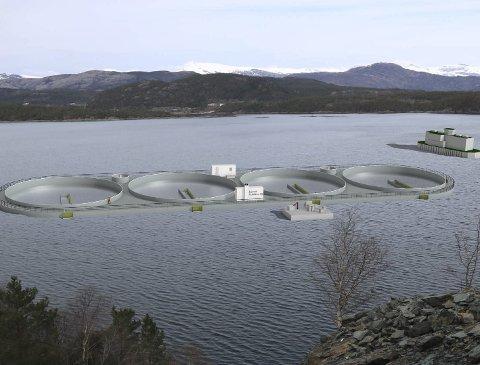 Ny tid: FLO Marine har fått med seg Steinvik Fiskefarm på uttesting av lukka oppdrettsmerder. Utviklingsløyve er søkt, og håper er at Westcon Florø skal kunne levere anlegget, som er bygd i stål, i 2017.ill: Polarny Maritime D&E AS