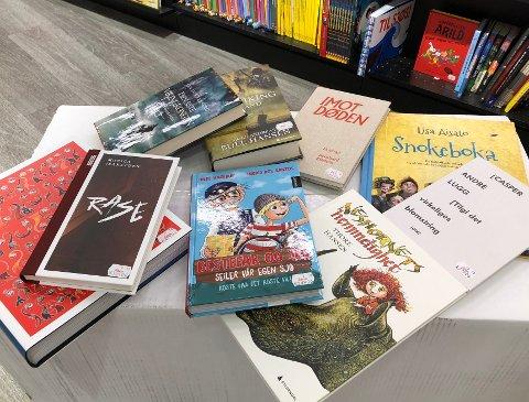 Vår anmelder Christen Hvam har i løpet av 2018 vurdert flere bøker - så her gir vi deg den litterære julegaveguiden.