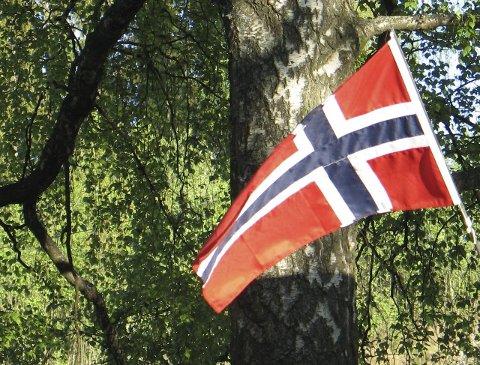 I dag skal det veies med flagg og synges. Men synger vi riktig?