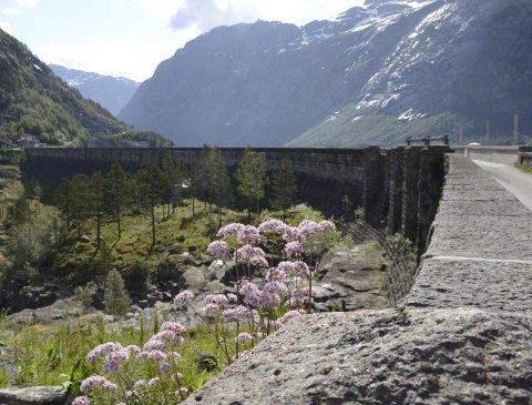 Arbeidet på demningen i Skjeggedal vil medføra at det kan verta venting på inntil 15 minutt før bilar og personbilar kan kryssa. Arkivfoto: Mette Bleken