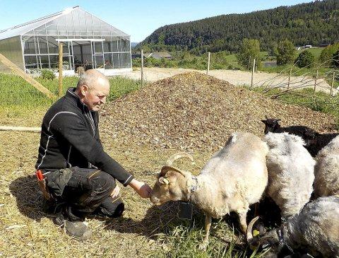 TENKER NYTT: Gårdbruker Tore Felin her på Lørdal gård regner med at han kan anrike fem mål jordbruksjord hvert år med sin nytenkende teknikk. FOTO: LARS IVAR HORDNES