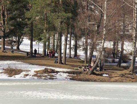 TIL DET FORNØDNE: Bassengparken velforening ønsker at det settes opp toalett i parken.