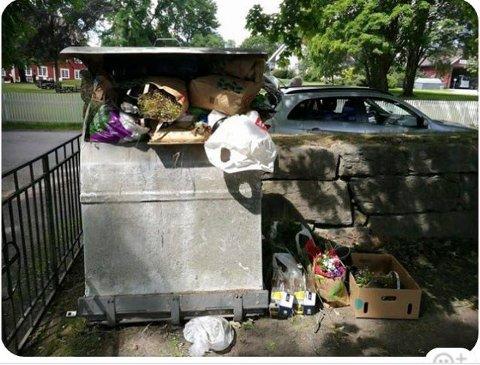Slik ser det ut på Norderhov kirkegård. Leserfoto