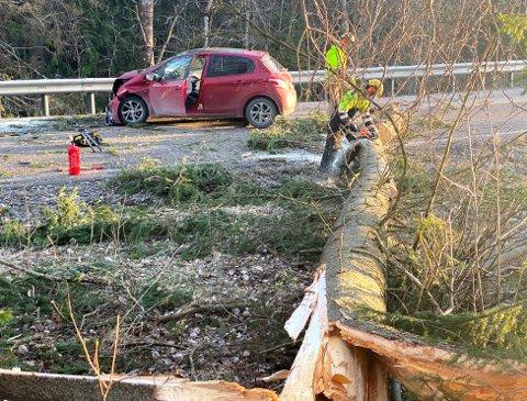KRASJ: Treet falt over veien og i denne bilen satt Leif Øivind da det smalt. FOTO: RB-TIPSER