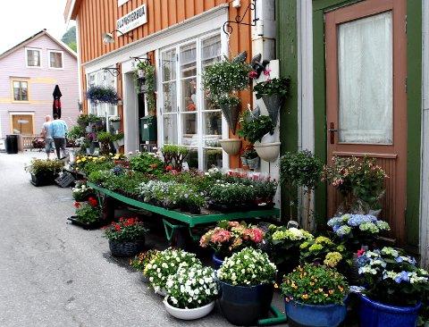 Selger blomsterbua: Her har det vært blomsterbutikk i 45 år. Nå legges Blomsterbua i Sjøgata 29 ut for salg. Foto: Torild Wika