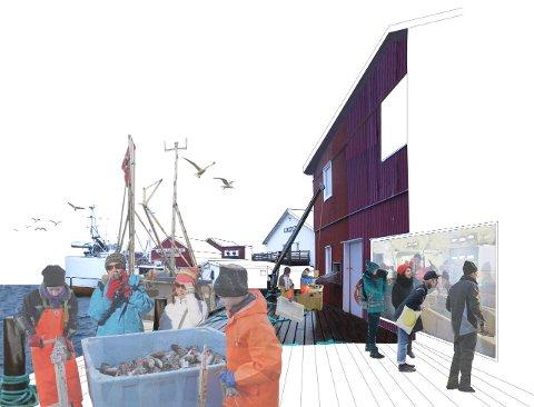 """Fredvang havn, tegnet av arkitektfirmaet 70oN for prosjektet """"Fremtidens fiskevær."""""""