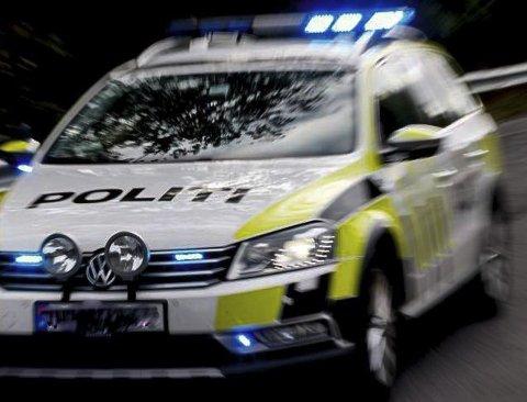 Politiet hadde ikke anledning til å rykke ut til skadet måke.