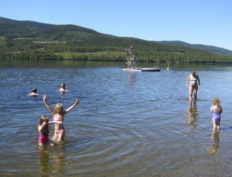 Herleg: På friluftsområdet Furustrand ved Heggefjorden i Øystre Slidre har det vore eit yrande badeliv i sommar.
