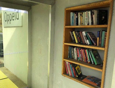 Gratis bøker: I Hamarøy tilbyr bokbyen blant annet gratis bøker på flere busstopper.
