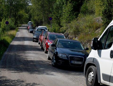 P-KAOS: Flere sjåfører har søndag gitt blaffen i parkering forbudt-skiltet ved Gansvika. Politiet melder om lignende forhold flere stedet, og kommer nå med en bønn til badegjestene.