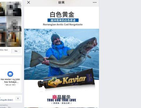 Kaviarreklame: Her er en skjermdump av det kinesiske reklamebildet av Ola Skjeseth. Originalbildet er tatt av Espen Rikter Svendsen.