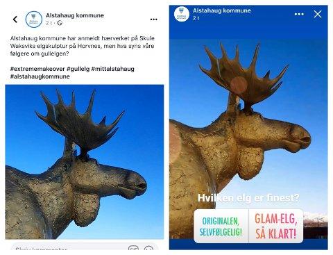 LA UT AVSTEMNING: Alstahaug kommune la ut en meningsmåling på sin Facebook-side, der man kunne stemme om man likte elgen best før eller etter den ble spraylakkert i gull av uvedkommende.