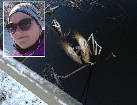 Ruth Kristin Nesset (33) fra Marker syns det var et trist syn å se de døde gjeddene i Gjølsjøen.