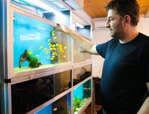 Jason Aksnes har ikkje gjeve opp kampen for å få driva Akvarieboden på Opstad.