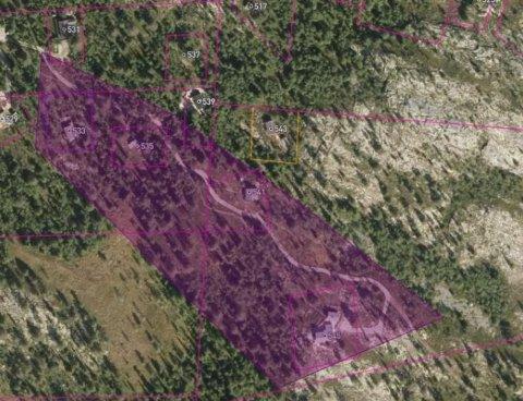 Flyfoto av den omstridte vegen i Venåsmorke vedlagt kommunens saksdokument.
