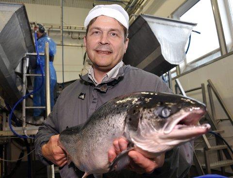 GODE TIDER: Daglig leder for Nova Sea Helgeland, Odd Strøm, er glad for at den rekordhøye omsetningen i 2016 gjør at de kan dele ut en halv milliard til sine eiere.Foto: Arne Forbord