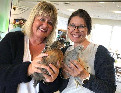 """STOR GLEDE: Cecilie B. Langeli frivillighetskoordinator og Cecilie Engelsen avd.leder  ved Kamfjordhjemmet bo og behandlingssenter hygger seg her med hønene """"Chick En"""" og """"Pjusken."""""""