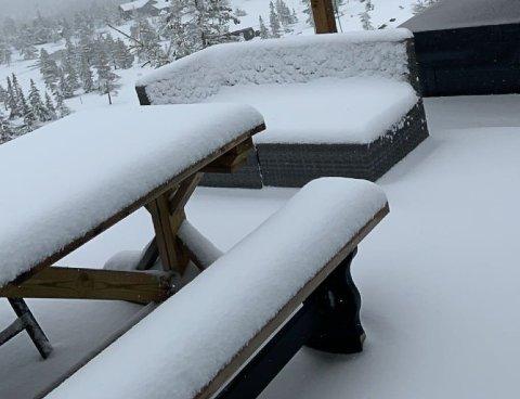 HVITT: Snø på Blefjell 10. mai. Det har Sølvi Kolset aldri opplevd før. Foto: Sølvi Kolset