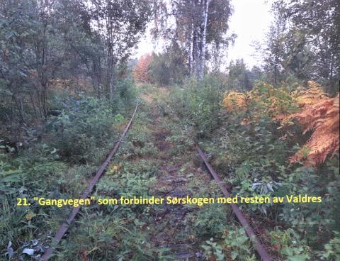 Livsfarlig å ferdes: Sørskogen Grunneigarlag har fotografert og dokumentert Valdresbanens dårlige forfatning, og beskrevet trusselen dette utgjør for de som ferdes i området. Dette er ett av totalt 21 bilder de har oversendt Nord-Aurdal kommune.