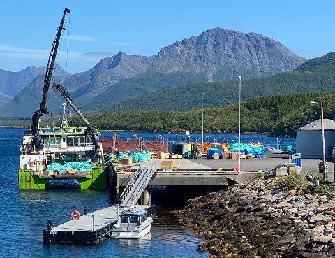 Finansiering: Politikerne sa nei til å selge denne kaia. Det skaper problemer for finansieringen av ny tømmerkai som er planlagt bygd i nærheten.