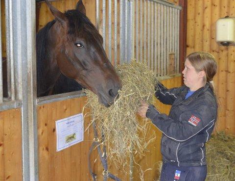 Kjører løp: Anne Grete Rasmussen kusker sin egen Oddvar torsdag. Her med stallhesten Think Abigail.