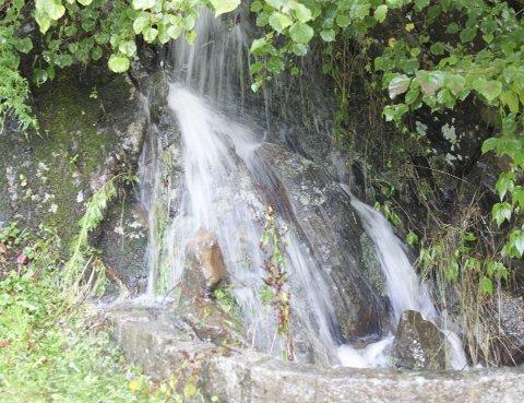 LAVT I tERRENGE: Overvann fra Brønnhøyden og Knardalsåsen kommer i store mengder ned til Eskeviken når det regner.