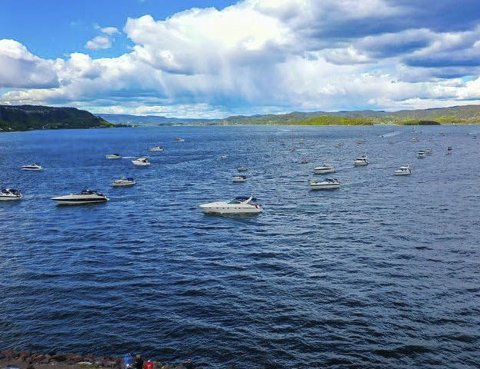 Et flott syn: Både for fuglene, deltakerne i båtene og folkene som sto på land og viftet med flagget var båtkortesjen et flott syn. alle foto: Monica Hundstad