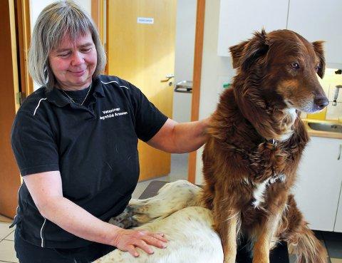 Veterinær Ragnhild Arnesen fra Rana Veterinærkontor, får mange henvendelser fra bekymrede hundeeiere i disse dager.