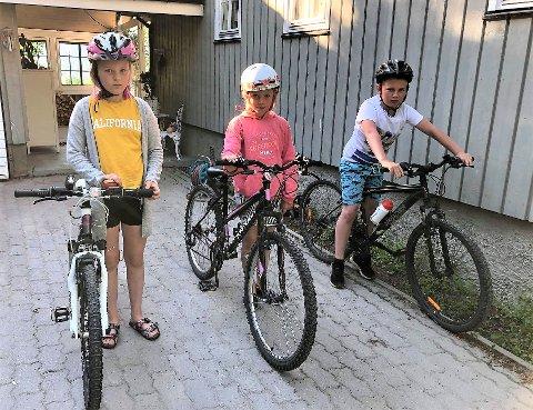 LØSNET HJULENE: Malin (13), Oda (11) og Jacob (11) Kvello Berger er glad de ikke mistet hjulene sine da noen hadde løsnet seks hjulmuttere på deres sykler for snart et år siden. (Arkivfoto: Privat)