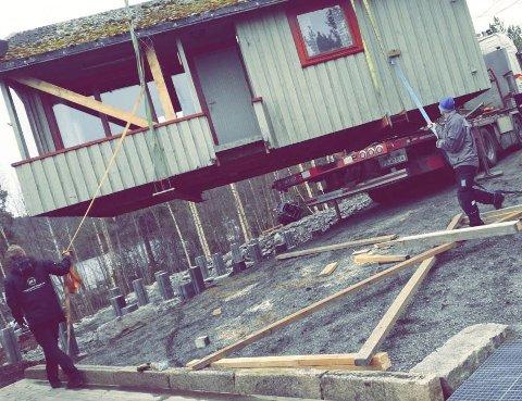 I Lufta: Her henger hytta i lufta, før den blir plassert ned på pillarene som Kjell Hommelsgård har gjort klare.Privat foto