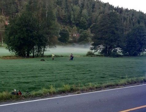 Føreren av lettmotorsykkelen ble fraktet til sykehuset i Arendal i ambulanse etter ulykken.