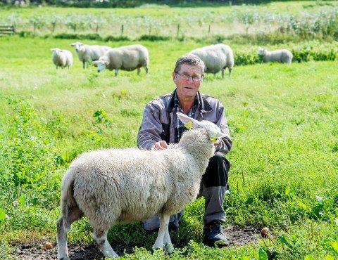 Hans Herman Utgård er gårdbruker med base på Vesterøy, hvor det siste lammet ble funnet dødt med bittskader  fredag formiddag.