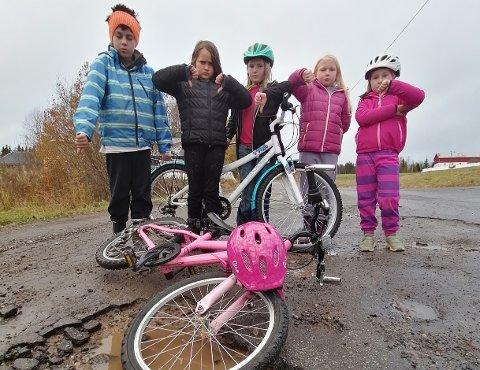 IKKE BRA: – Jeg skulle ønske kommunen hadde gjort noe, sier Raymond Bless. Her er flere barn fra området samlet foran et av de verste hullene på vegen.